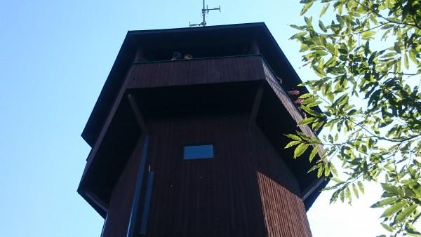 Plattform der Aussichtswarte Demmerkogel