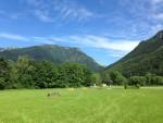 Erleben Sie erholsame Tage in der Pferdewelt Reichenau - wir bieten Urlaub am Pferdebauernhof für Familien inkl. ReitpauschalenFerienwochen für Kinder, Urlaub mit Pferd, Ponyreiten, Streichelzoo