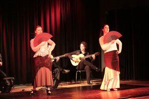 Flamenco Tanzshow