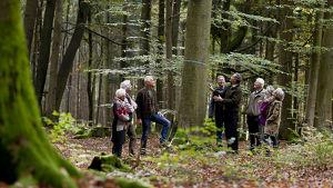 Waldführung im FriedWald Schöcklland