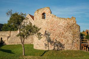 Tag des Denkmals – Mautern – Römisches Kastell Favianis