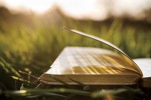 Von Buch zu Buch im Burgenland * Literaturfahrt des PEN-Clubs