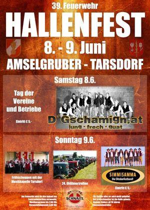 39. Tarsdorfer Hallenfest 2019 SONNTAG