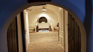 Advent im Zechkeller - Ausstellung mit Wein und kulinarische Versorgung