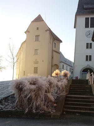 Seggauer Schlossbrunch im Februar mit Live-Musik