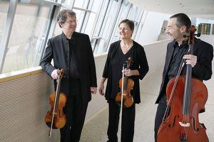 Oberösterreichisches David-Trio