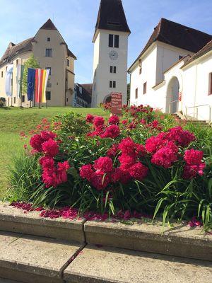 Steirischer Schlossbrunch  am Palmsonntag mit Live-Musik im Schloss Seggau
